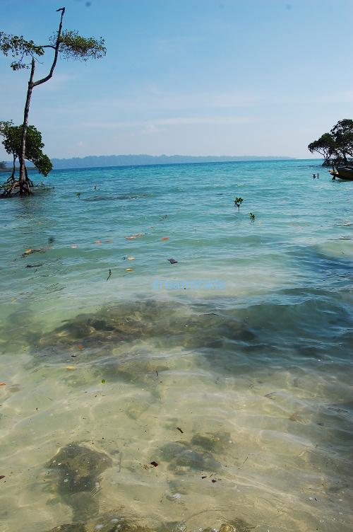 Havelock, Andaman & Nicobar Islands