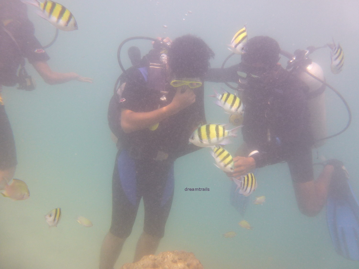 Scuba Diving, Elephant Beach, Havelock, Andaman & Nicobar Islands