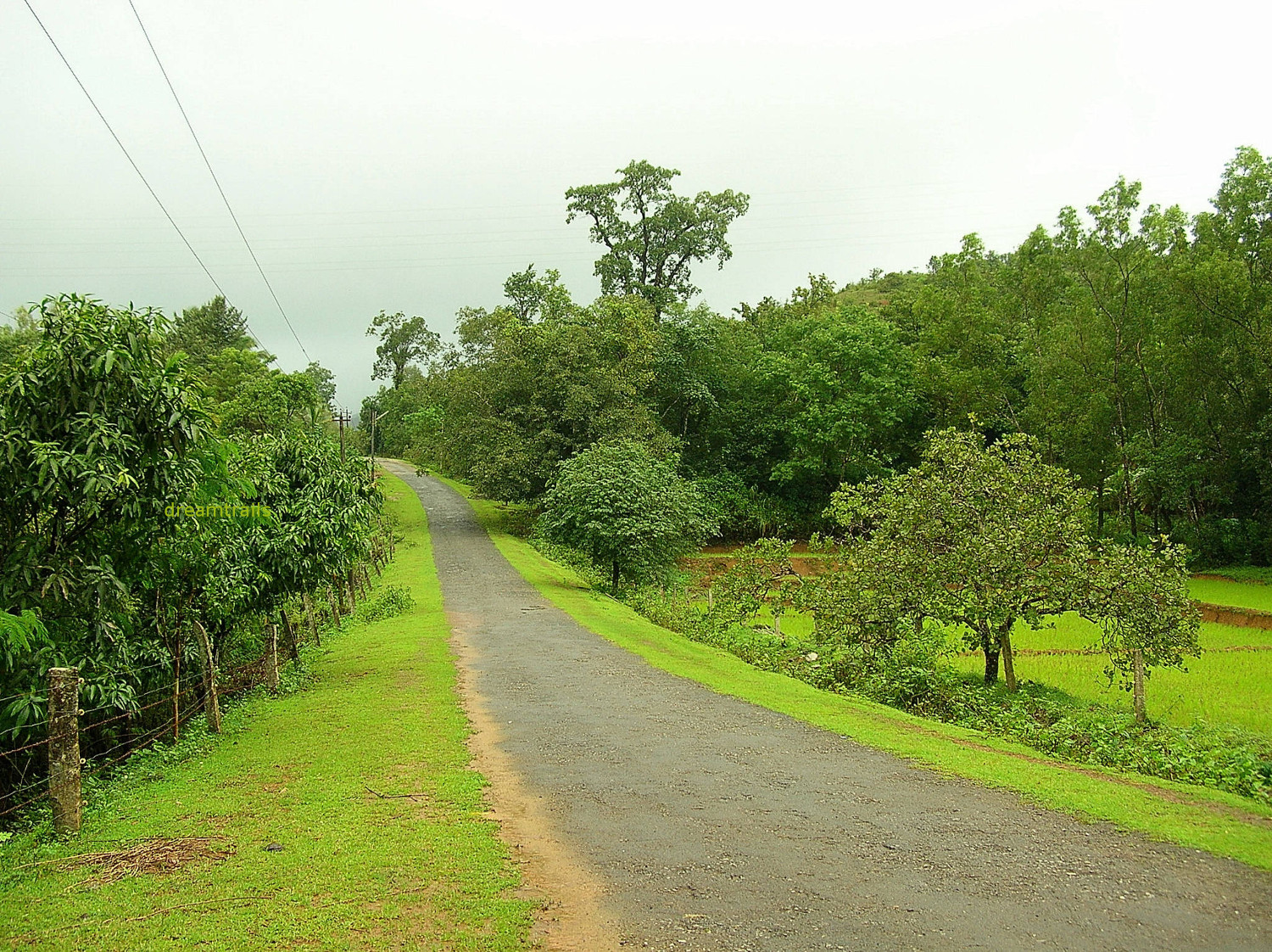 Interior Roads, near Jog Falls, Karnataka
