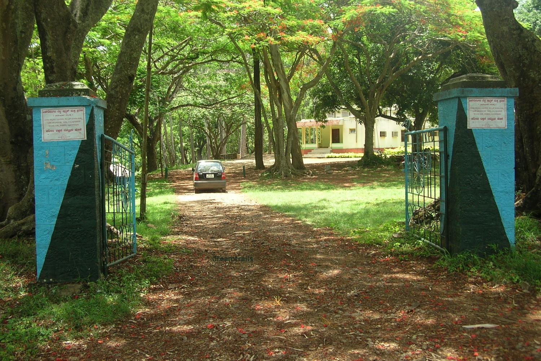 K Gudi, BR Hills, Karnataka