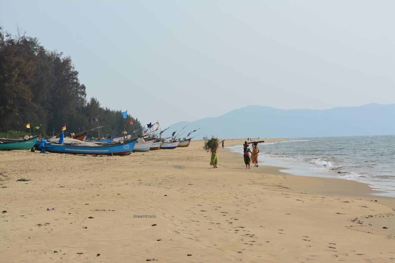 Devbagh Beach, Karwar, Karnataka