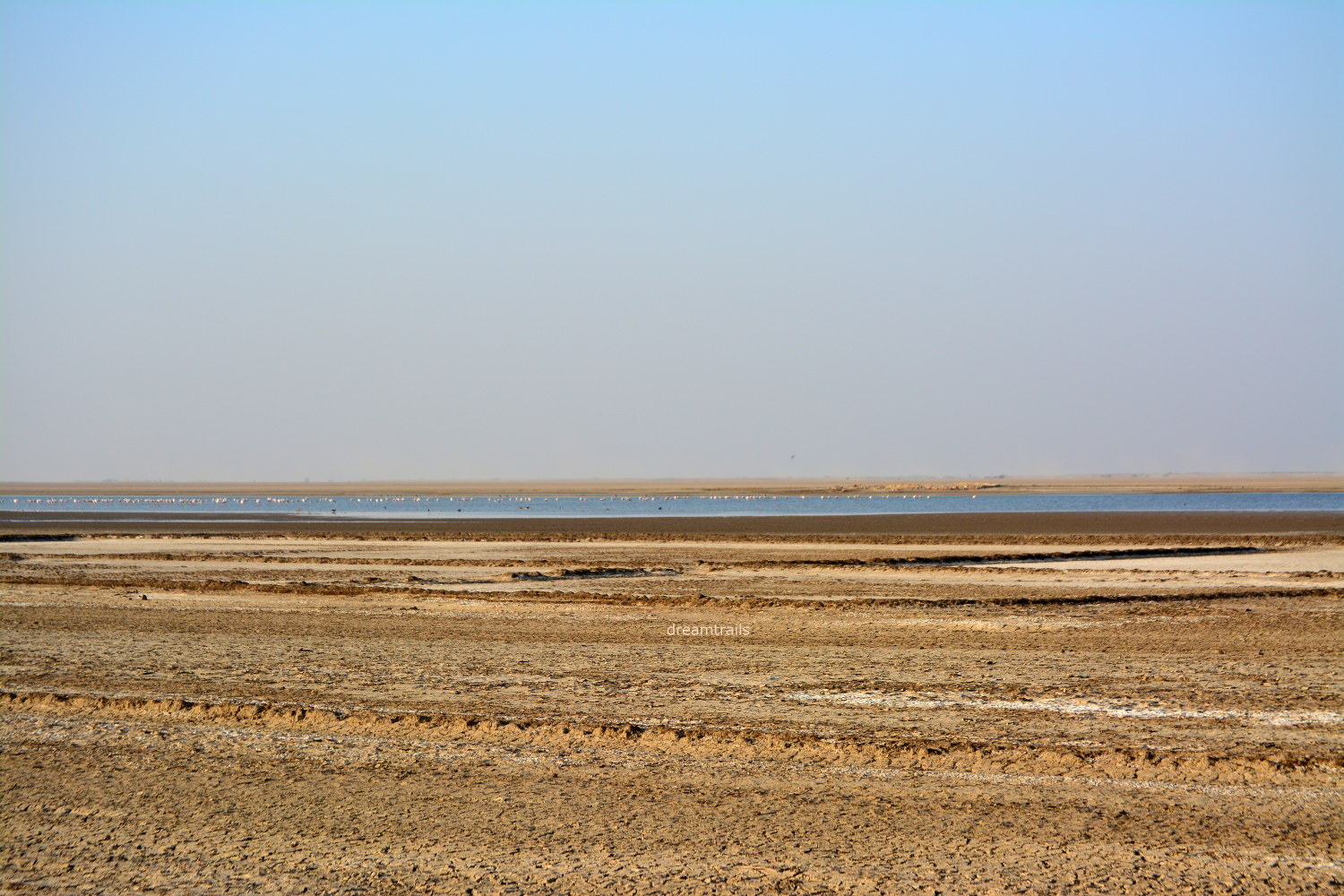 Okaro Kharaghoda: Little Rann of Kutch