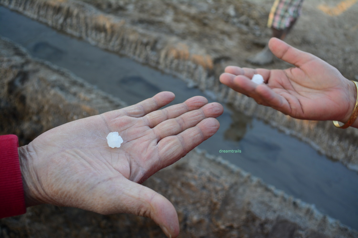 Extracted salt at Little Rann of Kutch