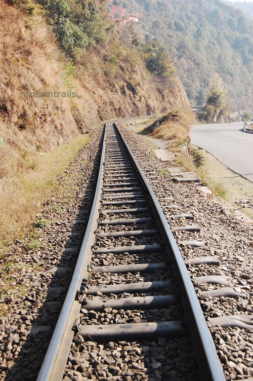 Toy Train to Shimla